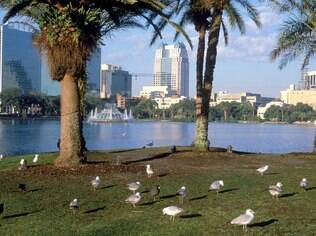 Aproveite Orlando além dos parques de diversões
