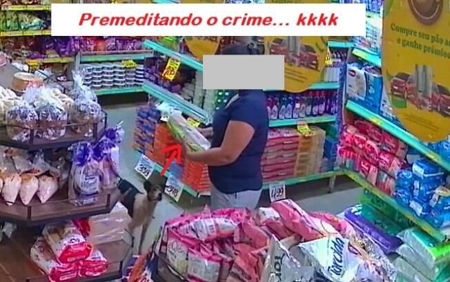 No mesmo dia do roubo, o cão voltou e tentou pegar um item de uma cestinha, mas foi flagrado pelo cliente