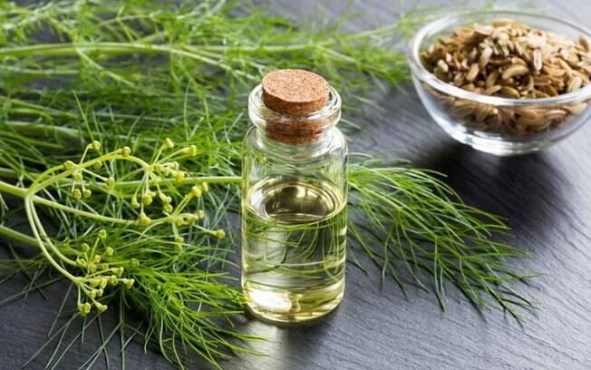 8 receitas de remédios caseiros com erva-doce
