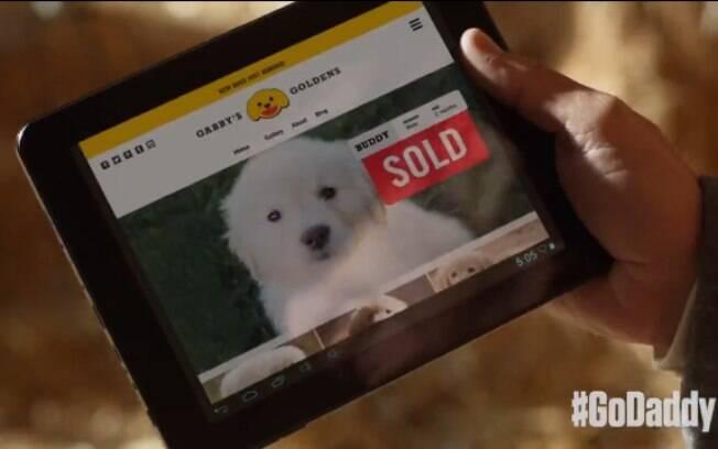 O retorno do cachorro para a casa é comemorada pelos seus donos porque eles já haviam vendido o filhote em um site hospedado no GoDaddy (janeiro de 2015). Foto: Reprodução