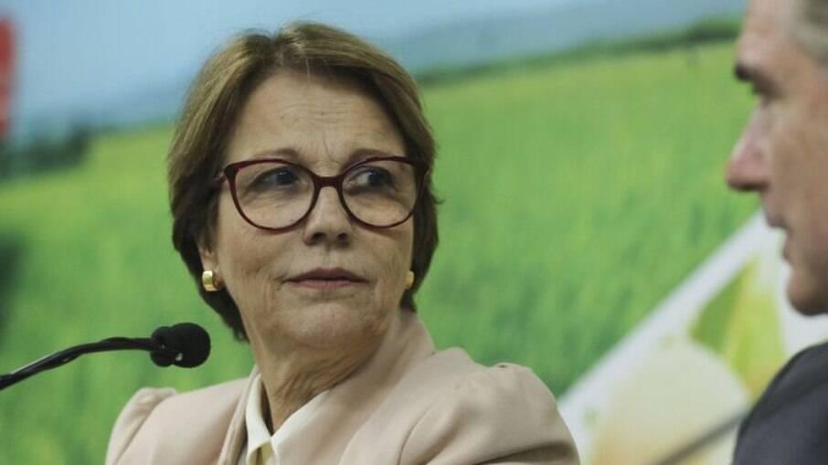 """""""Bloqueio de carne não é ato político da China"""", disse Tereza Cristina em entrevista à CNN Brasil"""