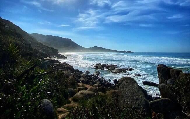 Praia da Galheta, Florianópolis