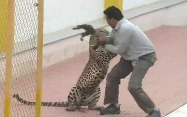 Vídeo mostra exato momento em que o leopardo agarra o braço de um homem em escola indiana