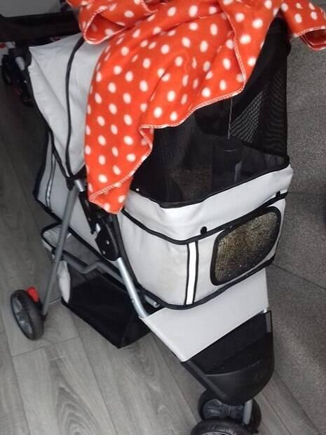 O carrinho de bebê foi encontrado em um parque da Escócia
