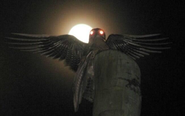 """Pássaro """"fantasma"""" assusta moradores da colômbia"""
