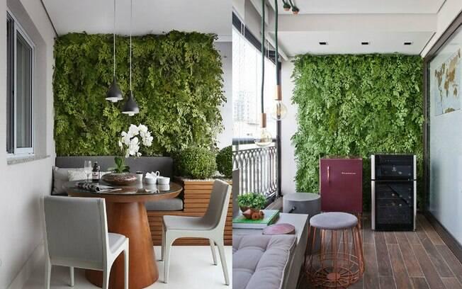 Ao escolher montar uma parede verde para ter um jardim vertical, é preciso ter alguns cuidados. Especialista dá dicas