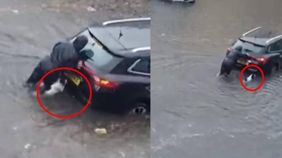 O cachorro ajudou a tutora a empurrar o carro na enchente