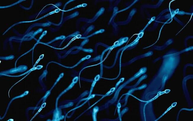 Cueca e alimentação podem atrapalhar a fertilidade