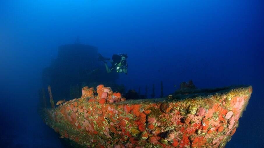 Passeio de fotografia subaquática leva turista ao naufragado Corveta Ipiranga V17