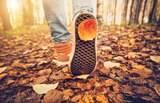 Lugares que valem a pena visitar no outono