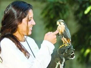 Proteção aérea.  Estudante de biologia Camila Ramos, 25, segura um falcão de coleira, que contribui para segurança de aeroporto de BH