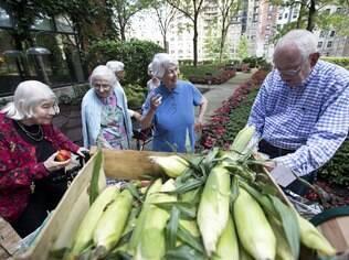 Residentes do asilo Montgomery Place escolhem vegetais na feirinha do produtor, em Chicago