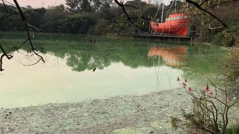 Lagoa do Taquaral ficou verde e com mau cheiro durante falta de chuvas em agosto.