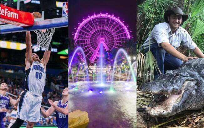O que fazer em Orlando fora dos parques? Você pode ir a uma partida de basquete ou passar um dia ao lado de jacarés
