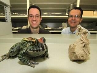 Anfíbio que viveu há 70 milhões de anos é exposto na Universidade Federal do Triângulo Mineiro