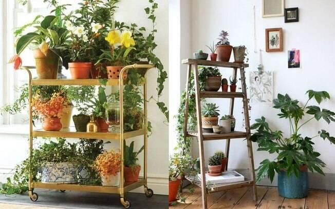 Quer montar um jardim vertical em casa? Algumas opções estão bombando no Pinterest;  confira seis ideias e inspire-se