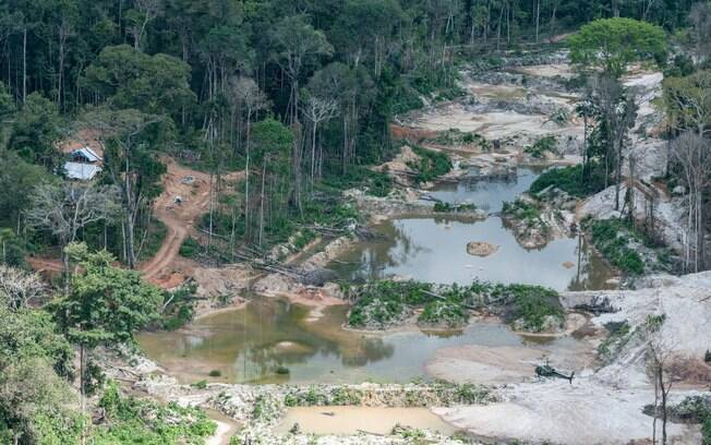 Terra Indígena Munduruku é um dos alvos do garimpo ilegal no Pará