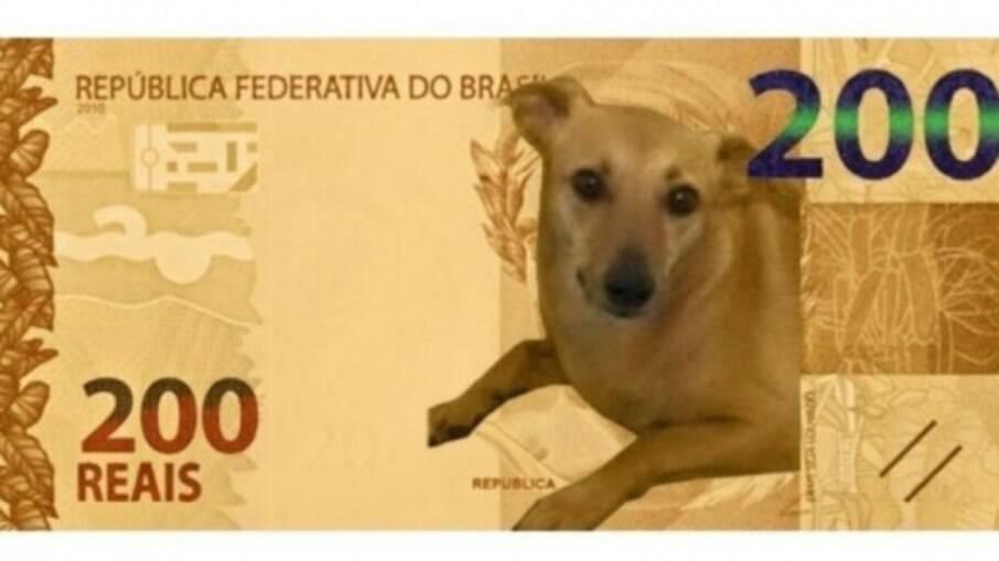 O meme do vira-lata caramelo como a nota de 200 reais