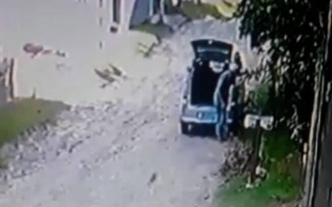 Câmera flagra homem abandonando cinco gatos em Campinas