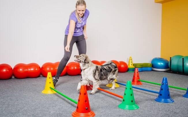 A prática de exercícios traz muitos benefícios, como fortalecimentos dos ossos, redução do peso e evitar doenças cardíacas