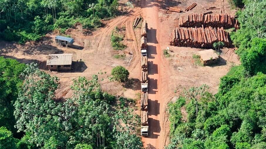 Amazônia: desmatamento atinge área similar a três cidades de São Paulo