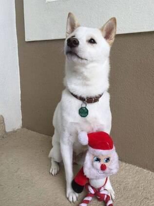 Naya e seu brinquedo de Papai Noel