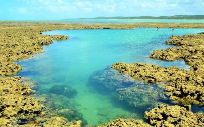 Piscina natural que foi formada graças aos corais da praia do toque.