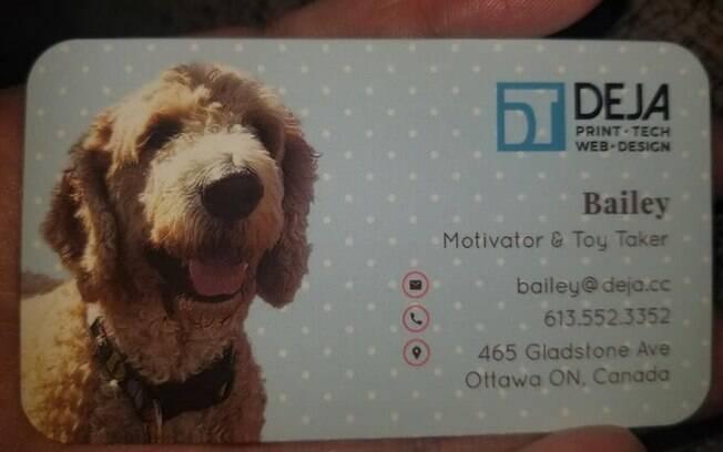Cartão de visitas de Bailey