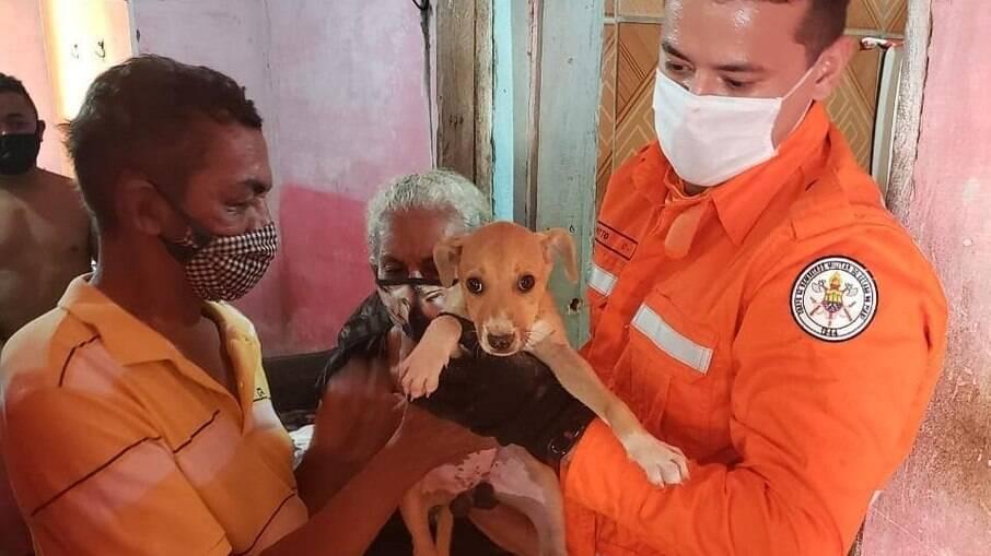 Bombeiros resgatam cachorro que ficou preso entre muros em Teresina, Piauí