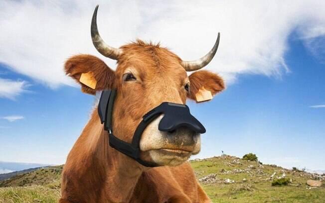 Máscara que transforma arroto de gado em água