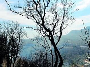 Época de clima seco facilita propagação dos focos de incêndio