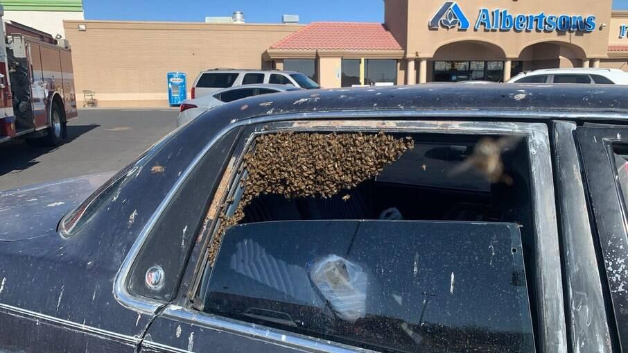 O enxame de abelhas invadiu o carro do homem enquanto ele estava no supermercado
