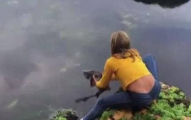 O tubarão ficou preso entre rochas durante uma maré baixa.