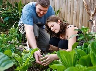 Hortas aumentam o contato com a natureza e incentivam o consumo de alimentos saudáveis