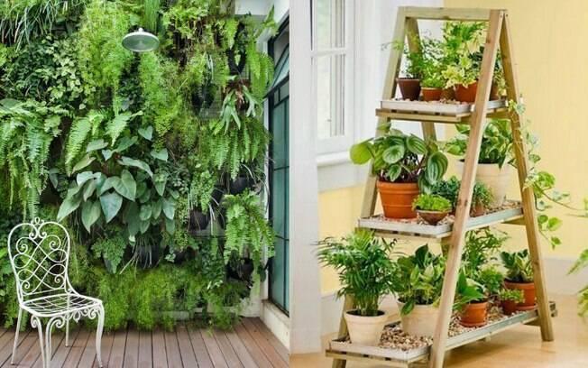 Os jardins verticais também estão entre as tendências de decoração mais buscadas no Pinterest