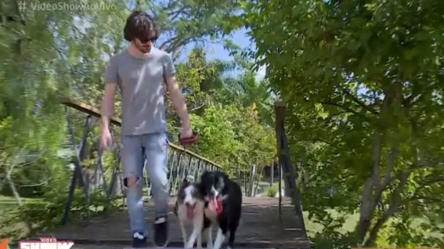 Fiuk e seus dois cachorros