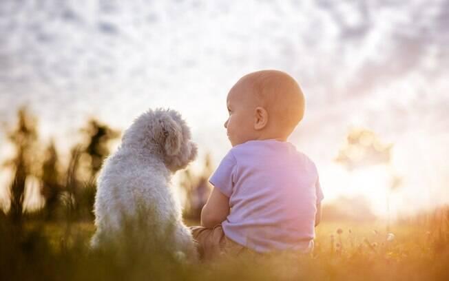 A relação entre os bebês e os cães é totalmente possível e pode até gerar benefícios para ambos