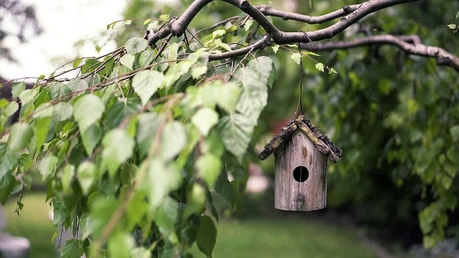 Casinhas com ninhos deve ficar a uma distancia segura