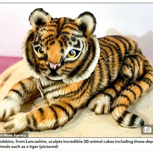 Molly Robbins%2C de 28 anos%2C cria bolos com réplicas bem realistas de animais domésticos e selvagens