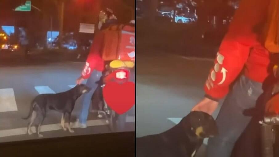 Motoboy acaricia cachorro em sinal vermelho