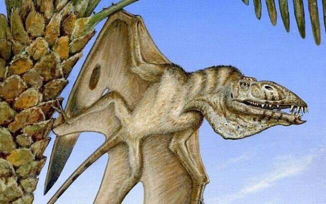 Pterodáctilo nomeado de Caelestiventus hanseni,  tinha aproximadamente 1,5 m, e se tornou um dos maiores  da espécie