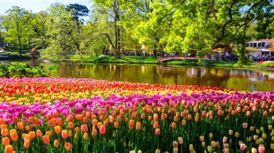 Também chamado de Jardim da Europa, o Parque Keukenhof é o local que reúne a maior quantidade de flores do mundo