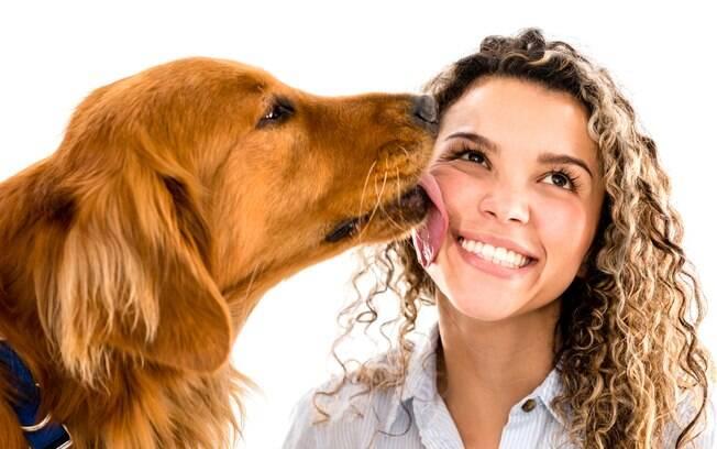 Cães não são capazes de distinguir rostos humano