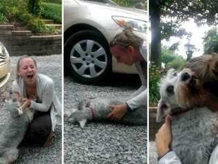 Cachorra desmaia de emoção ao rever sua dona.