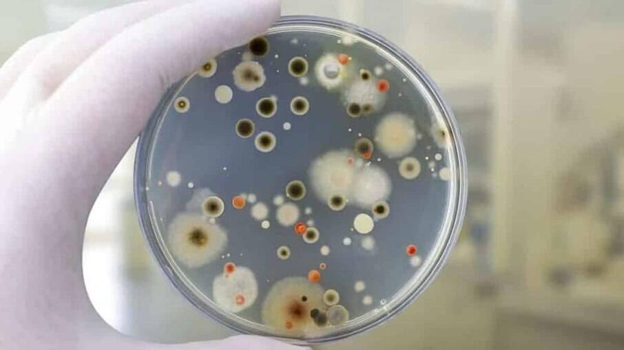 Fungo negro: custo para tratamento pode passar de R$ 450 mil apenas com remédios