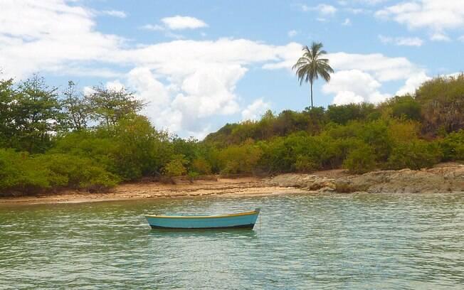 A tranquilidade da ilha de Santo Aleixo, próximo a Porto de Galinhas