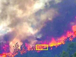 Tecnologia. Caixas nas cores amarela e vermelha indicam onde há focos de incêndio nas matas
