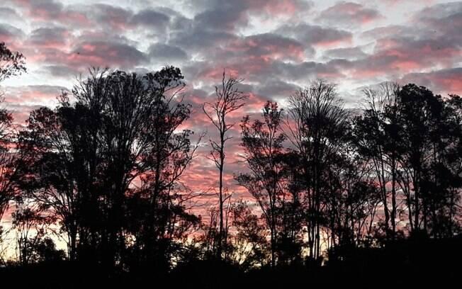 Campinas registra madrugada mais fria do ano com 12,8ºC