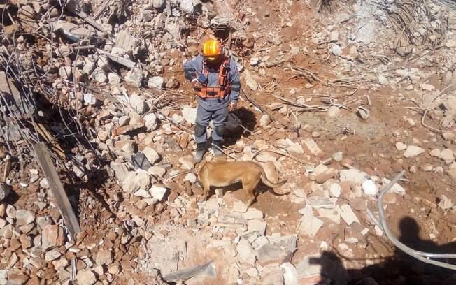 Bombeiros acharam restos mortais nos escombros, perto das 14h desta sexta, com a ajuda da cadela farejadora Hope