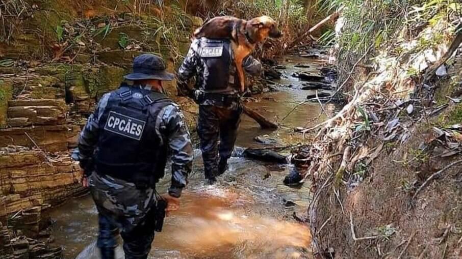 Pastor alemão Saukè é carregado por PM após se ferir em rio de Cocalzinho de Goiás